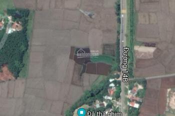 Cho thuê đất làm kho xưởng hoặc trang trại