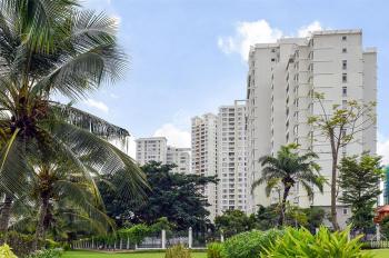 Chuyên cho thuê căn hộ cao cấp Riverside Residence Phú Mỹ Hưng Quận 7, LH 0908 765 127
