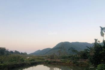 Bán đất làm nhà vườn tại Hồ Lụa, Yên Bình, Thạch Thất, Hà Nội, giá 3,4 tỷ