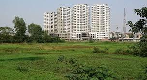 Bán lô đất 50000m2 MT đường Xương Cá 1, xã Phong Phú - Bình Chánh. Giá rẻ 2tr/m2, LH: 0902441488