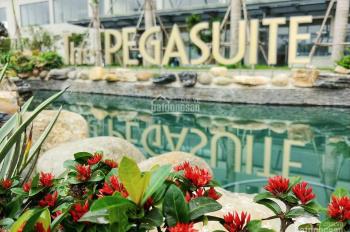 Chính chủ cho thuê lại 1 phòng ngủ căn trong căn hộ The Pegasuite với giá 5tr/tháng. LH: 0909407949