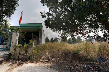 Cần bán gấp nền đất ngã ba Phú Hòa, phường Hòa Lợi Bến Cát, Bình Dương, 5x17m, giá 730tr