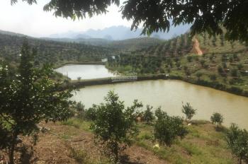 Gia đình chuyển mục đích sử dụng 180.000m2 (18ha) đất trang trại tại Lương Sơn