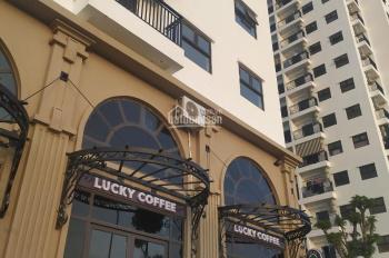 Ruby CT3 giá rẻ nhất Hà Nội sở hữu căn hộ chỉ từ 270tr