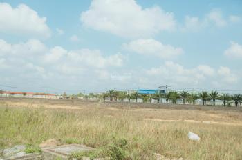 Bán xây dựng kho xưởng, đất trong KCN Tân Đô, diện tích 62.100m2