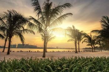 Vinhomes Ocean Park: Cho thuê biệt thự view hồ siêu vip HA1 - 117, giá 80 tr/th, 0961 550 299