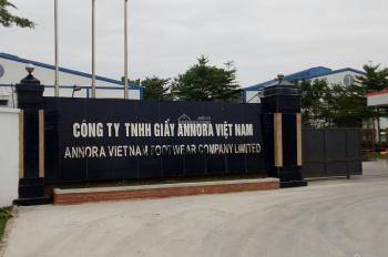 Bán đất nền KĐT Bình Minh Nghi Sơn Tĩnh Gia, cơ hội đầu tư số 1 Thanh Hóa, LH: 09 86826346