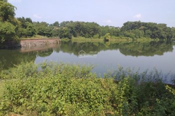Bán 3600m2 view hồ tại xã Cư Yên, Lương Sơn, Hòa Bình