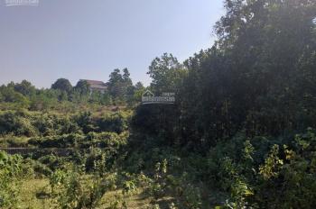 Bán 1000m2 đất giá 300 triệu tại Cư Yên, Lương Sơn, Hòa Bình