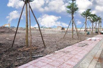 Đất Bàu Bàng sổ hồng riêng giá 295tr/100m2, LH chính chủ: 0906.720.035