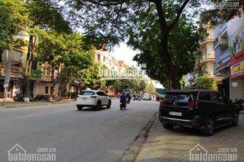 Bán nhà liền kề mặt phố Hồng Quang, đô thị mới Đại Kim - Định Công, HN 55m2* 4 tầng, 10,1 tỷ có TL