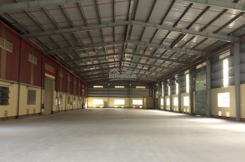 Cho thuê kho xưởng đường Hương Lộ 2, Bình Tân - Diện tích: 3000m2 - Giá: 150 triệu/tháng