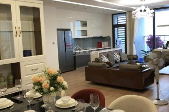 Cần cho thuê gấp căn hộ cao cấp tại 36 Hoàng Cầu, 69m2, 2PN, 1 vệ sinh, đủ đồ, giá 14 triệu/tháng