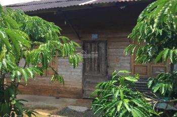 Bán đất kèm nhà 234/2 Lê Phụng Hiểu, Bảo Lộc, Lộc Tiến 55x75m (xem video)