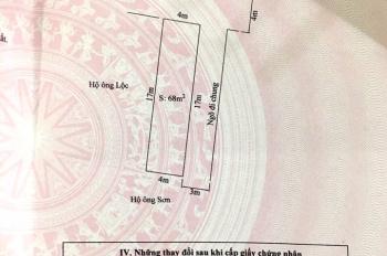 Bán đất tại ngõ 174 Cát Linh đường ngang lối sang đường Thành Tô, 68m2. Giá 15,5 triệu/m2