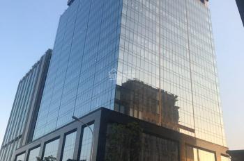 Cho thuê sàn văn phòng tại tòa nhà văn phòng Peak View 36 Hoàng Cầu