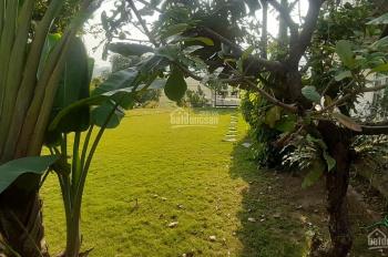 Đất đẹp, siêu bằng phẳng tại Beverly Lương Sơn, Hòa Bình cần tìm chủ mới