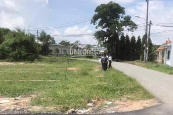 Đất thổ vườn MT đường Mai Bá Hương, 985,5m2, Bình Chánh, Sổ đỏ.