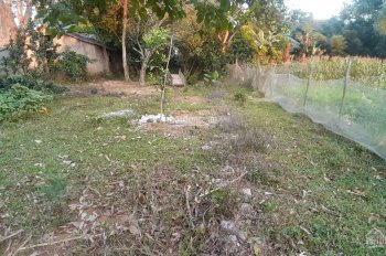 Bán gấp nhiều mảnh đất Cư Yên, Lương Sơn với nhiều diện tích khác nhau cho quý khách lựa chọn