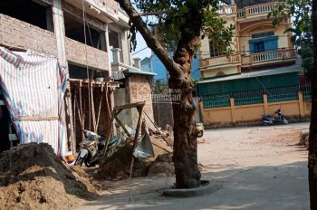 Công ty Quảng Lộc bán 3 lô đất, xây liền kề, 3,5 tầng, đường Giang Chính, P. Biên Giang, Q. Hà Đông