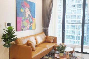 Cho thuê căn hộ cao cấp Trần Duy Hưng D'capitale (đối diện Big C) giá từ 10 triệu/th. LH 0984131618