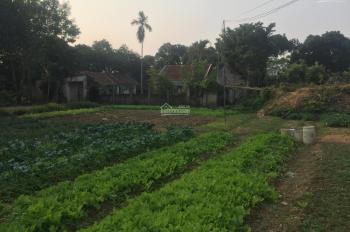 Cần chuyển nhượng lô đất 4512m2 đã có khuôn viên nhà vườn giá đầu tư tại Hòa Sơn, Lương Sơn, HB