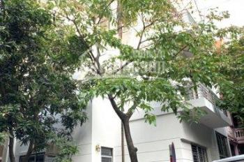 Bán biệt thự phố Mỹ Đình 2, Nam Từ Liêm, Hà Nội. Diện tích 180m2. giá bán 23 tỷ
