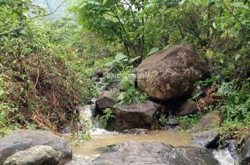 Bán 8ha đất Lương Sơn Hòa Bình, làm khu nghỉ dưỡng sinh thái, trải nghiệm học đường giá hợp lý