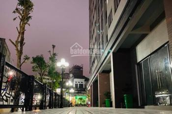 TNG Village Minh Cầu - nhà sang đón tết - chiết khấu cực hấp dẫn