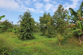 Cần bán gấp lô đất nghỉ dưỡng diện tích lớn ngay trung tâm Lộc Thành Bảo Lâm