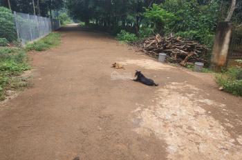 1 sào đường nhựa nhà nước, Long Phước, Bà Rịa, không dính quy hoạch giá 1tỷ3