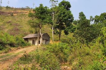 Cần sang nhượng gấp lô đất rừng 83ha, sản xuất 50 năm tại Tân Vinh, Lương Sơn, LH 0971018889