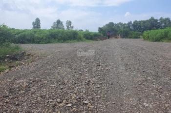 Chính chủ bán đất mặt tiền đường vành đai, thị trấn Phước Bửu, xuyên Mộc, giá chỉ 2tr/m2