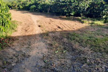 Khu nghỉ dưỡng 4800m2 hẻm Đinh Công Tráng cách trung tâm Bảo Lộc 8km
