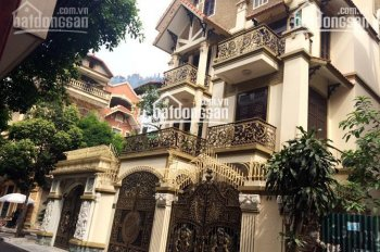Cần bán gấp nhà biệt thự hẻm 101 đường Nguyễn Chí Thanh, P9, Q5. DT: 8x20m, chỉ 28 tỷ 0941.969.039