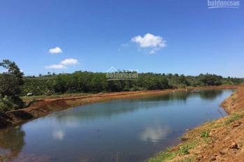 Bán đất Bảo Lộc khu view hồ chỉ 300tr có SHR từng nền