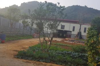 Bán đất sẵn xưởng gần khu công nghệ cao Hòa Lạc, DT 3600m2, LH: 0978659546