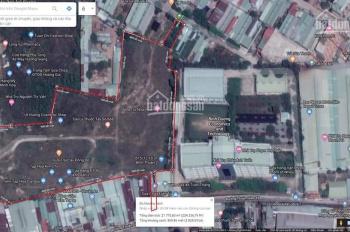Bán 2,3ha đất Thuận Giao, Thuận An có chủ trương phân lô 1/500
