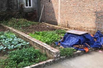 Bán gấp đất tại Trâu Quỳ Gia Lâm ô tô vào nhà cách đường Ngô Xuân Quảng 20m. LH 0973 683 486