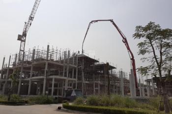 Chính chủ bán đất biệt thự Vườn Cam - Hoài Đức, 280m đường 24m giá chỉ 21tr/m2