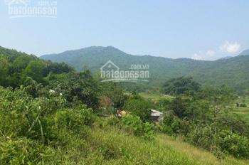 Chính chủ bán đất thổ cư view đồi núi chập chùng, S: 5400m2, giá 250tr/sào