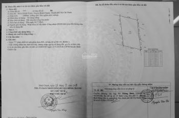 Bán đất NN 2000m2 giá 1ti75, Kênh 11 - Bắc Lê Minh Xuân (chính chủ)