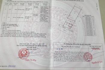 Bán đất mặt tiền Tỉnh Lộ 10, xã Lê Minh Xuân, huyện Bình Chánh, TP. HCM