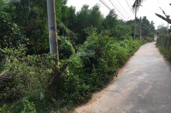 Bán đất đường Đỗ Văn Thi, Phường Hiệp Hòa, LH: 0989777362
