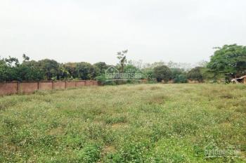 Cho thuê 4200m2 MT Nguyễn Văn Linh, vị trí đẹp làm kho bãi - kinh doanh. Giá 100tr/th, 0902441488