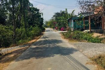 Cần bán đất đường Cây Trôm Mỹ Khánh, Thái Mỹ