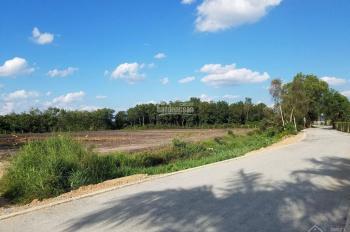 Cần 1 mẫu đất An Điền, Bến Cát đường nhựa 6m, DT 116x77m, thổ cư 300m2
