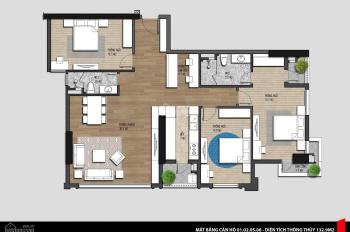 Chính chủ bán căn hộ 3PN tại dự án Iris Garden Mỹ Đình giá chỉ từ 30 triệu/m2, LH: 0989862186