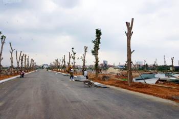 Bán nhà biệt thự liền kề Nam Sông Cầu Rào TP. Đồng Hới tỉnh Quảng Bình - Dream Homes, 0905.028.572