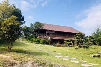 Siêu phẩm Lương Sơn, Hòa Bình, khuôn viên nhà vườn đẹp miễn chê muốn bán gấp